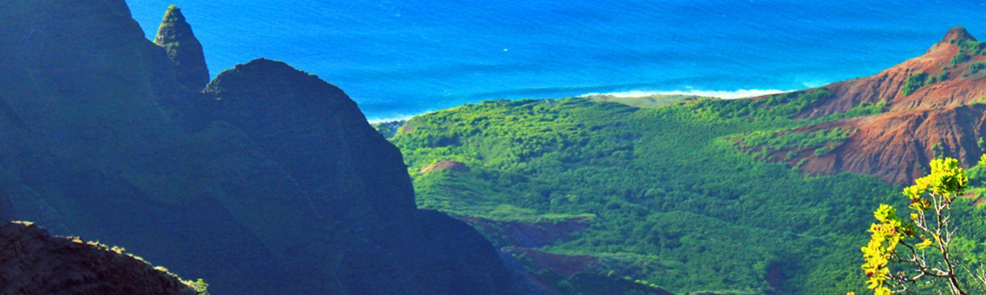 The Makahuena (Koloa, Hawái, Estados Unidos)