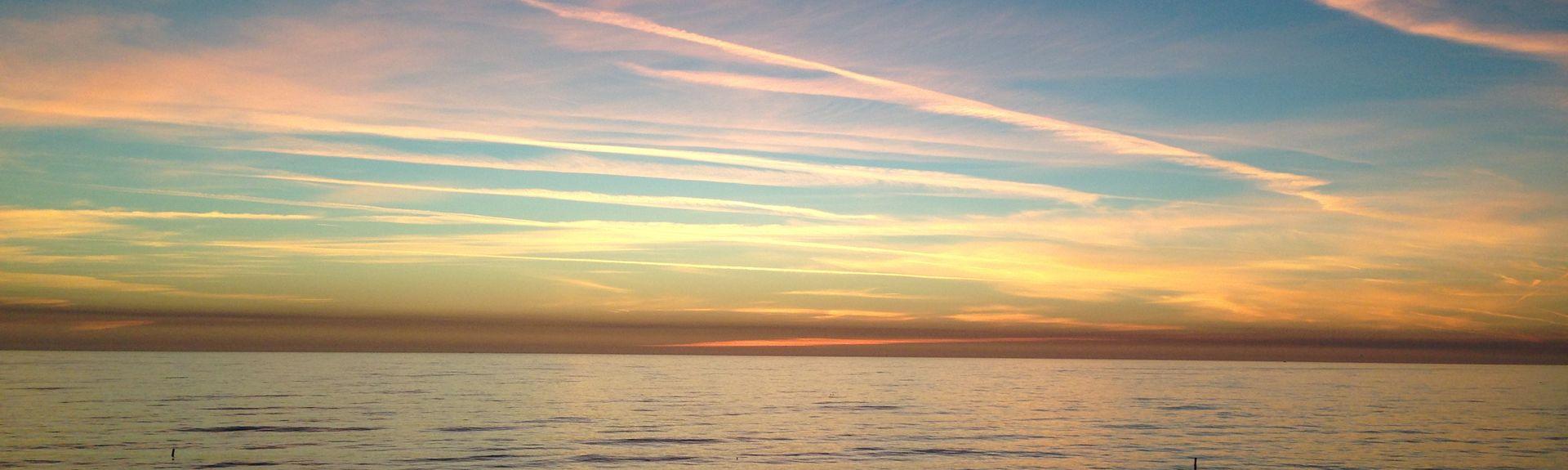 Sea Rocket, North Redington Beach, Florida, United States