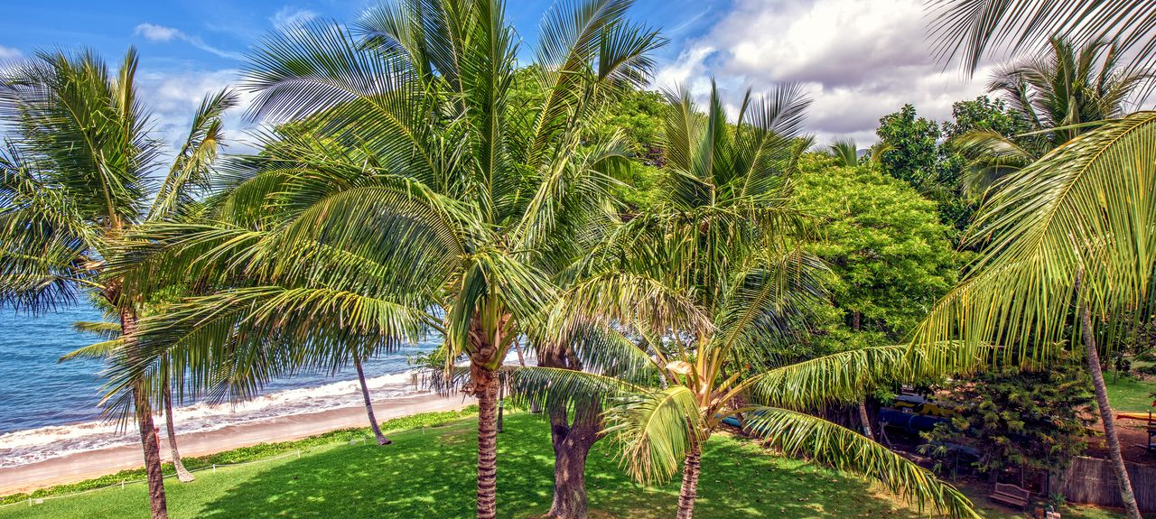 Kealia Resort (Kihei, Hawaii, United States)