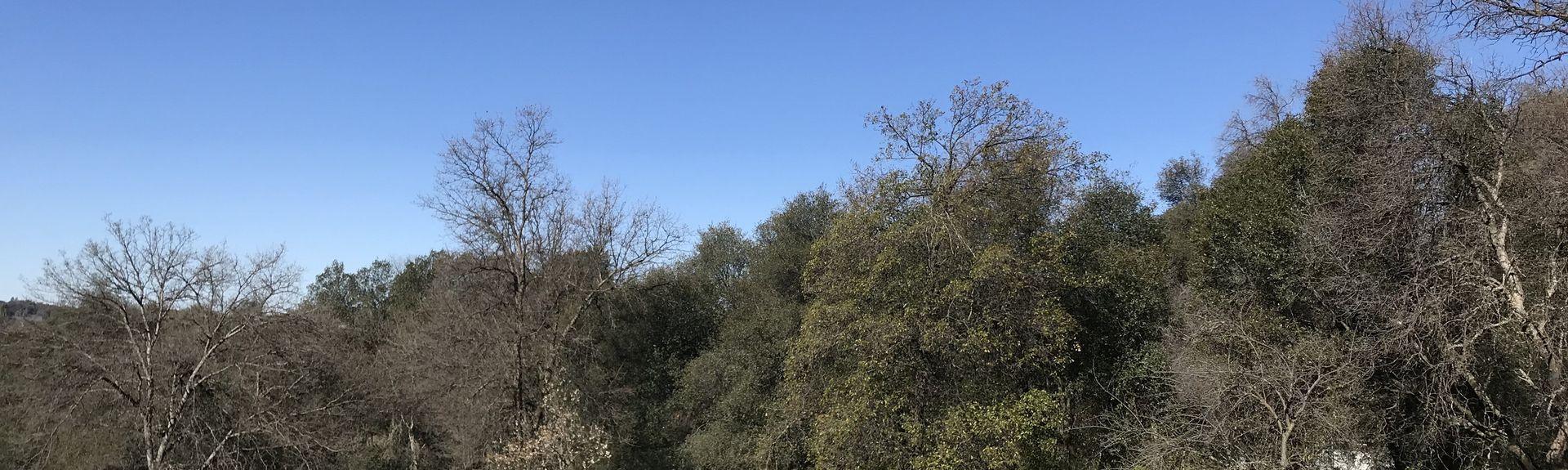 Sobon Estate (Weingut), Fiddletown, Kalifornien, USA