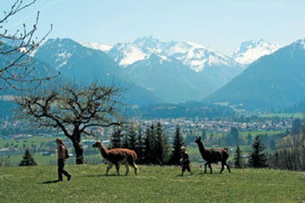 R채ppele, Oberstdorf, Beieren, Duitsland