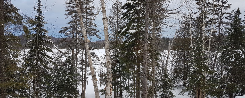 Mont Olympia, Piedmont, Québec, Kanada