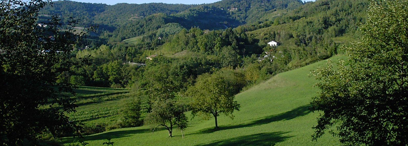 Pecetto Torinese, Piedmont, Italy