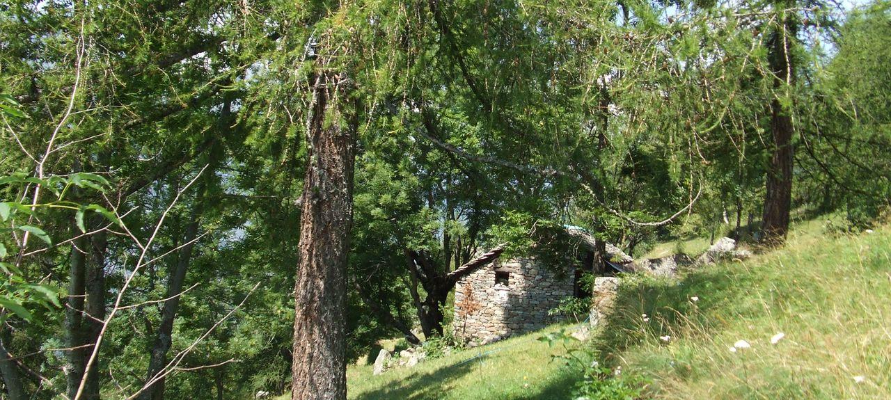 Grand Vert, Aosta Valley, Italy