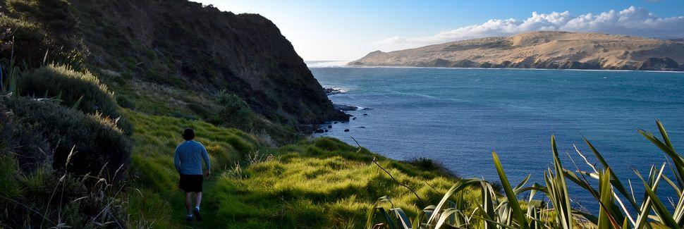 Northland, North Island, New Zealand