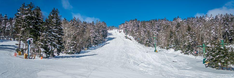 Snowshoe, Virginie-Occidentale, États-Unis d'Amérique