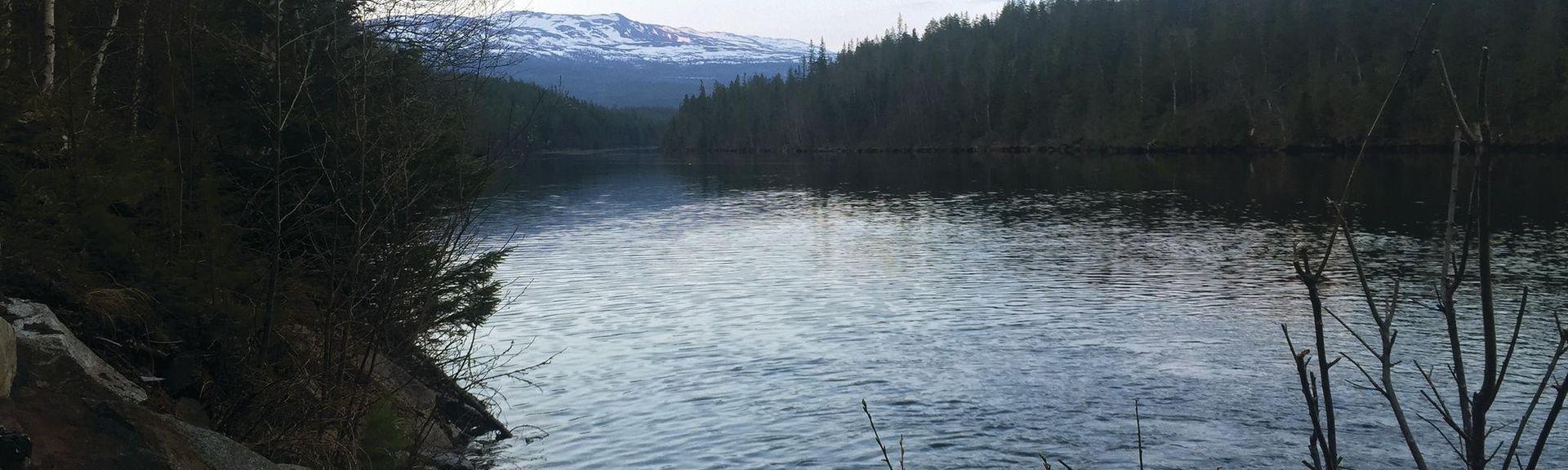 Tydal, Sor-Trondelag (condado), Noruega