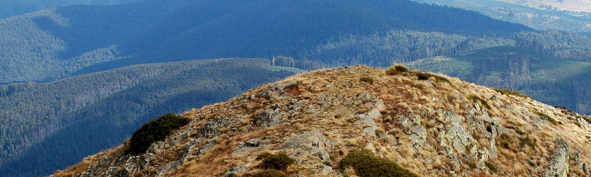 Skipisten Mt. Buller, Mount Buller, Victoria, Australien