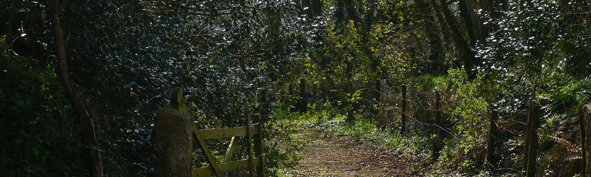 Lanivet, England, United Kingdom