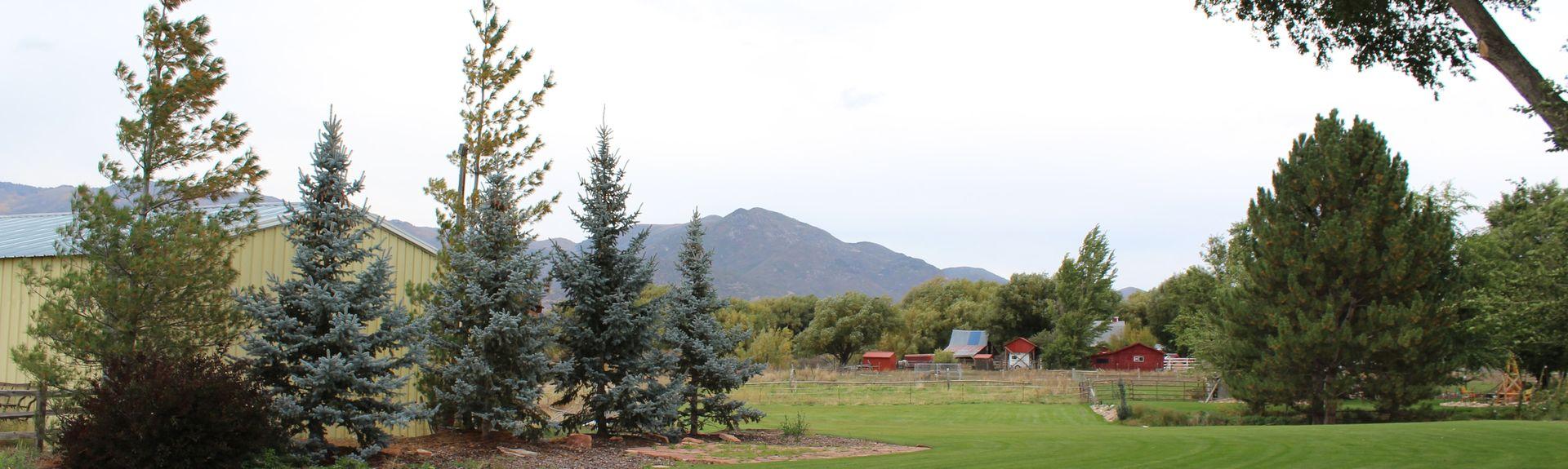 Provo Utah (temppeli), Provo, Utah, Yhdysvallat