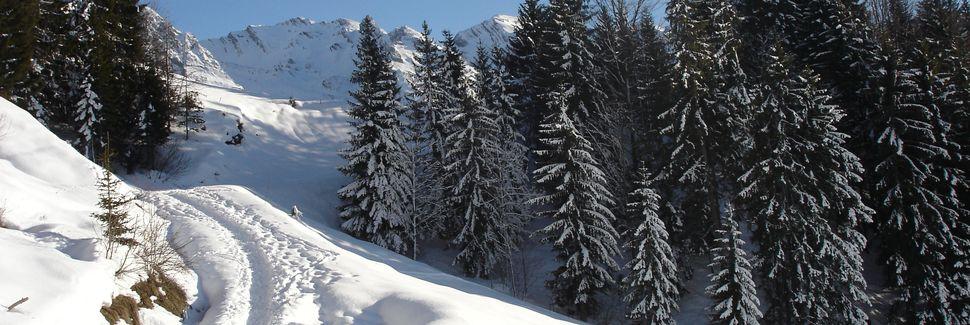 Les Villards-sur-Thônes, Auvergne-Rhône-Alpes, Frankrig