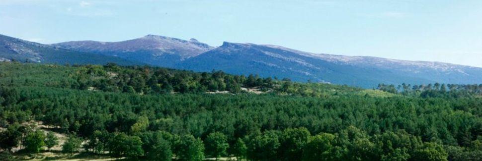 Hontoria del Pinar, Castilla y León, España