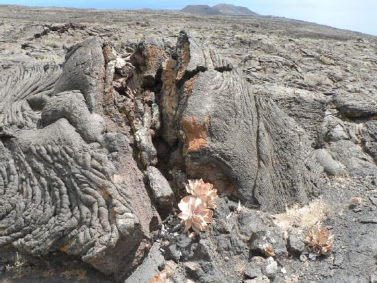 El Hierro biosfærereservat, Valverde, Kanariøyene, Spania