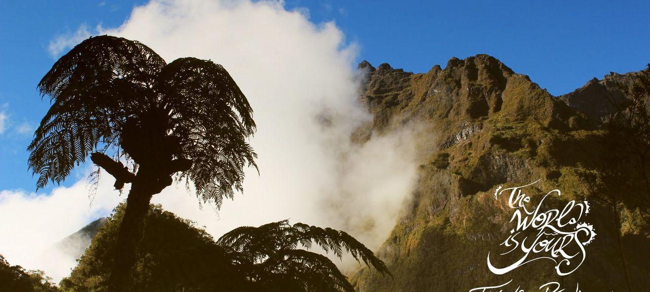 Le Centre, Saint Pierre, L'île de la Réunion