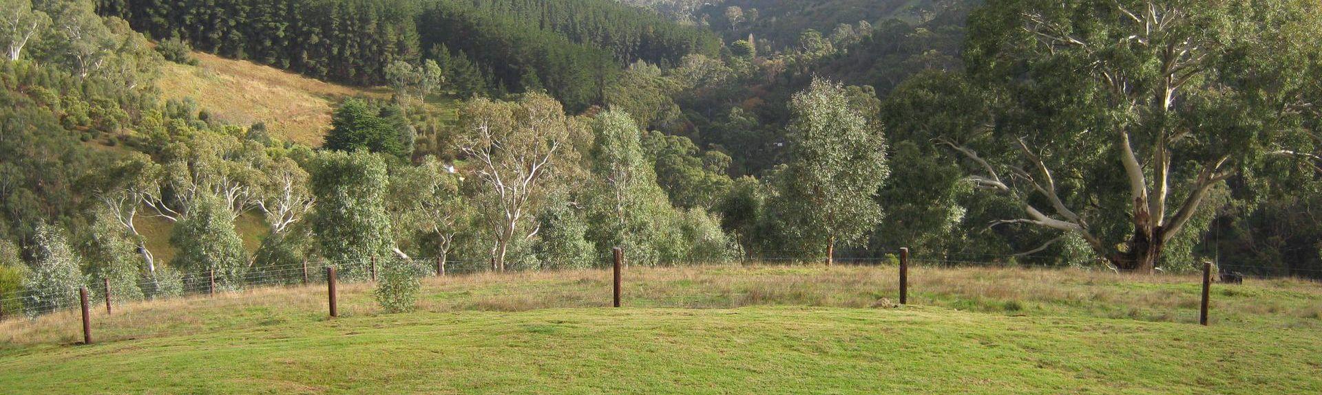 Coromandel East, South Australia, AU