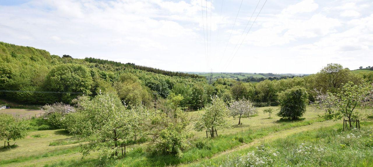 Widecombe in the Moor, Devon, UK