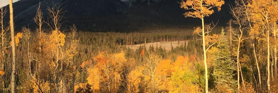 Funivia BreckConnect, Breckenridge, Colorado, Stati Uniti d'America