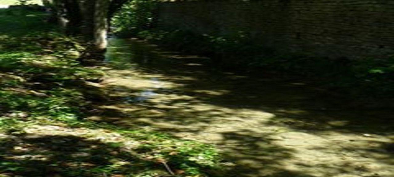 Vitteaux, Bourgogne-Franche-Comté, France