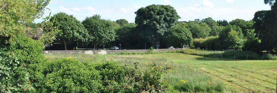 Menstonin juna-asema, Ilkley, Englanti, Yhdistynyt Kuningaskunta