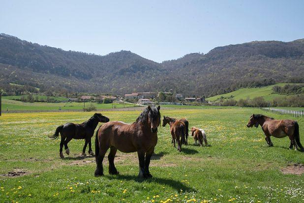 Ibarguren, Autonome Gemeinschaft Baskenland, Spanien