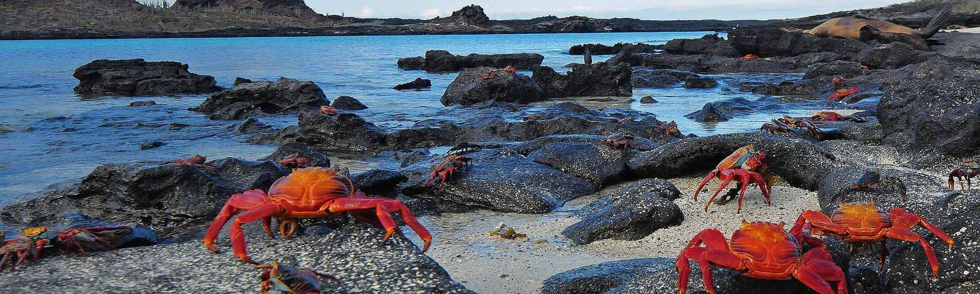 Las Grietas, Galápagos Islands, Ecuador
