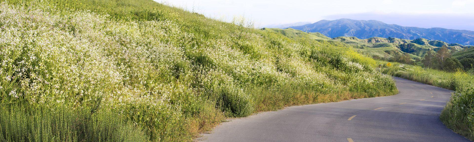 Chino Hills, CA, USA