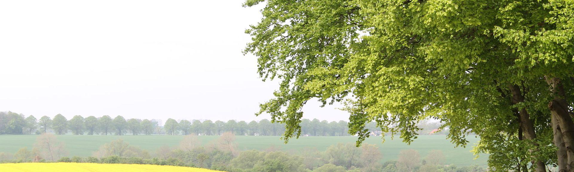 J端rgenshagen, Mecklembourg-Poméranie-Occidentale, Allemagne