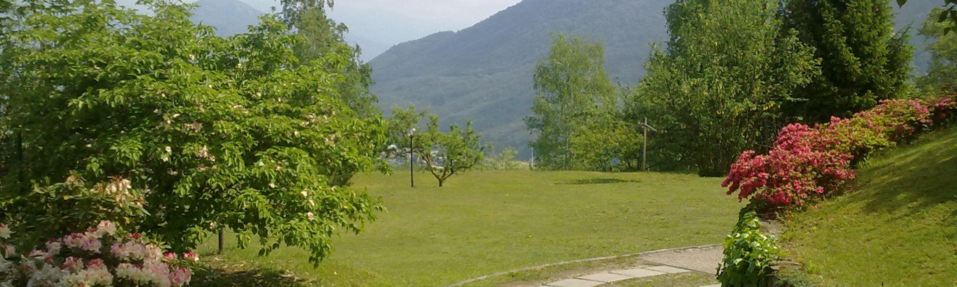 Belgirate, Verbano-Cusio-Ossola, Piedmont, Italy