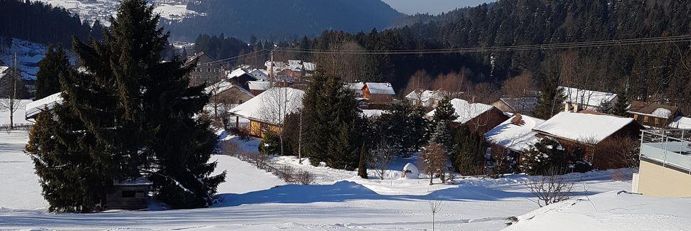 Bahnhof Muhlbach-sur-Munster, Mühlbach im Elsaß, Grand Est, Frankreich