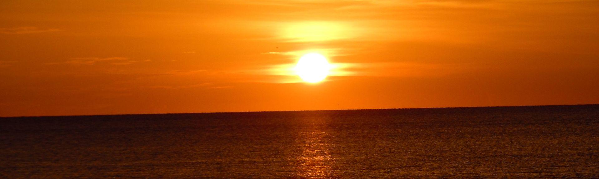 Apollo, Marco Island, FL, USA