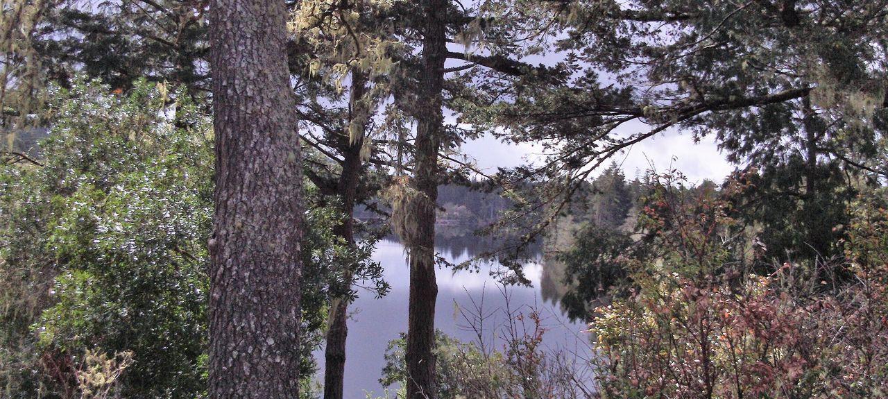 Reedsport, Oregon, États-Unis d'Amérique