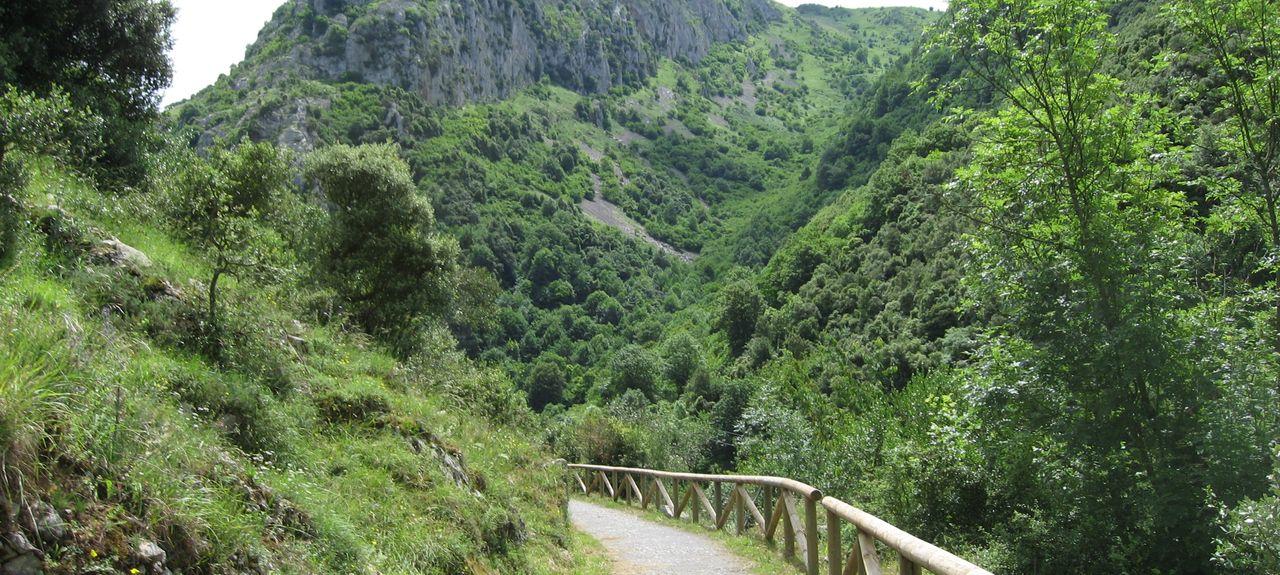 Proaza, Asturien, Spanien