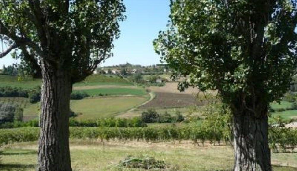 Ombra - Ronchiesa, Piémont, Italie