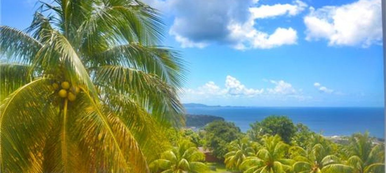 Saint-George, Saint-Vincent et les Grenadines