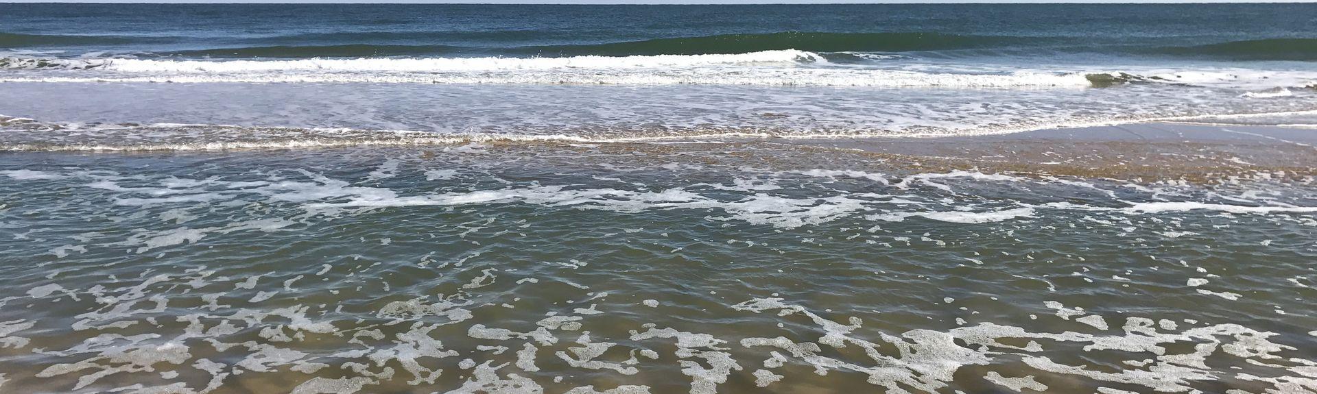 Caine Woods, Ocean City, Maryland, Verenigde Staten