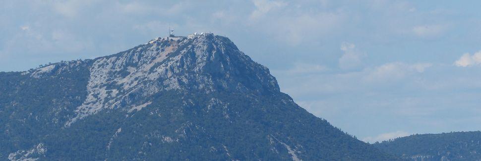 Cuers, Provence-Alpes-Côte d'Azur, França