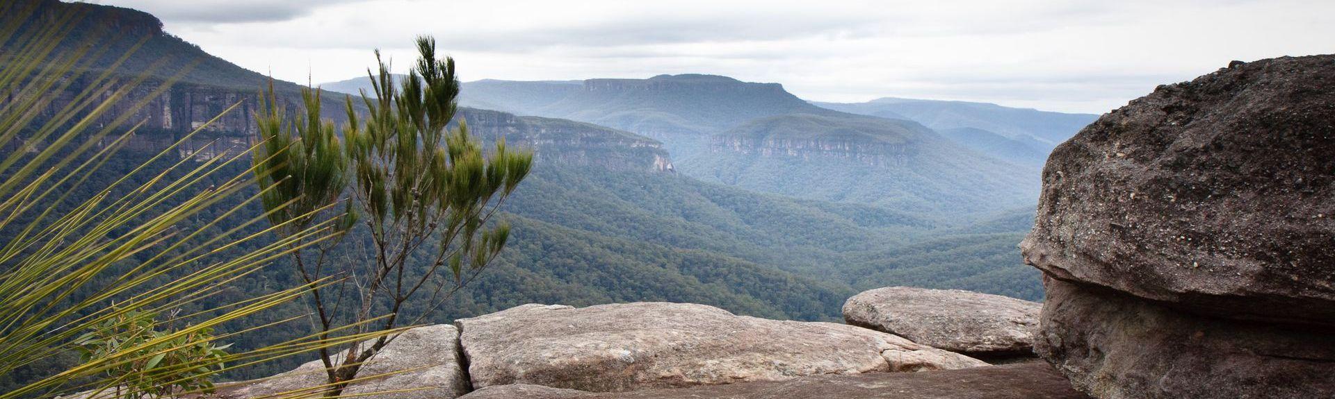 Pointer Mountain, New South Wales, Australia