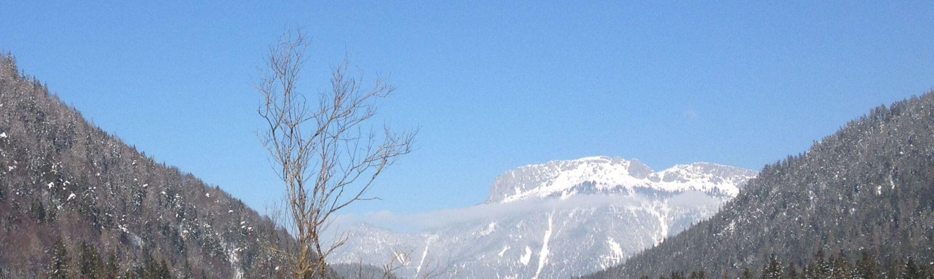 Fieberbrunn, Tirol, Österreich