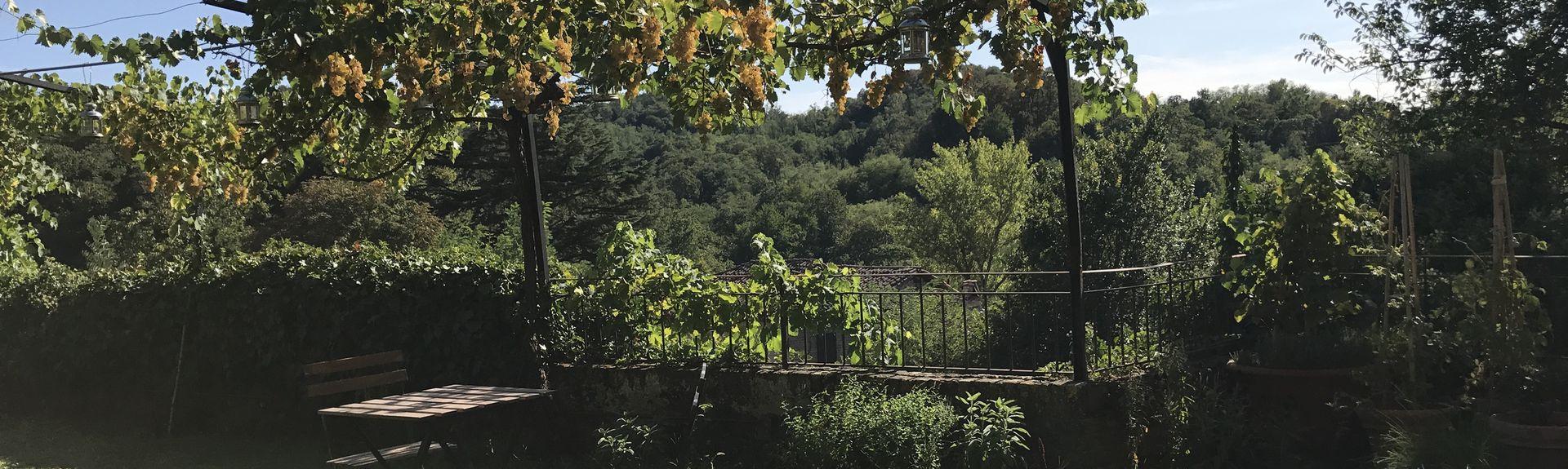 Alessandria, Piemonte, Italia