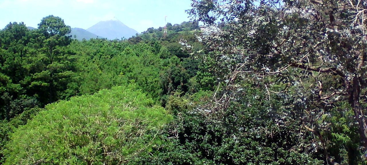 Antigua Guatemala, Sacatepéquez, Guatemala