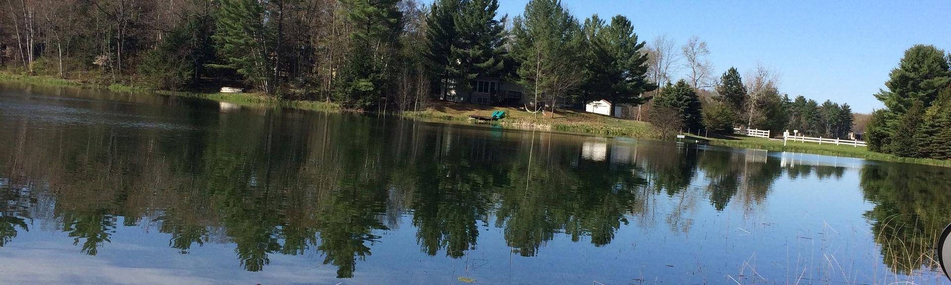 Hartwick Pines State Park, Grayling, Michigan, United States of America