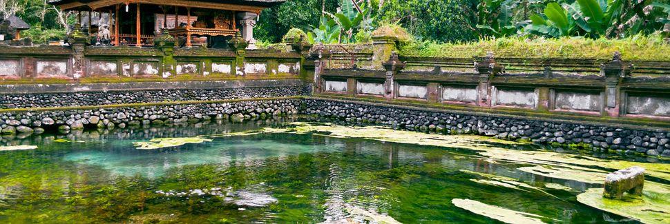 Ubud, Bali, Republic of Indonesia