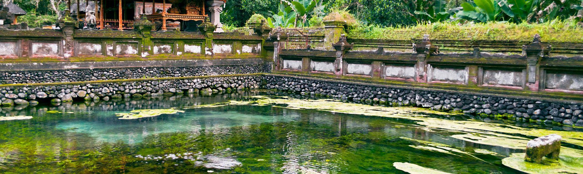 Ubud, Bali, Indonesien