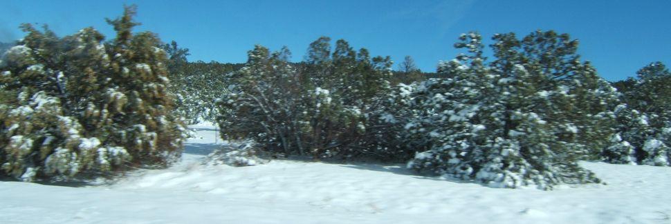 Navajo County, AZ, USA