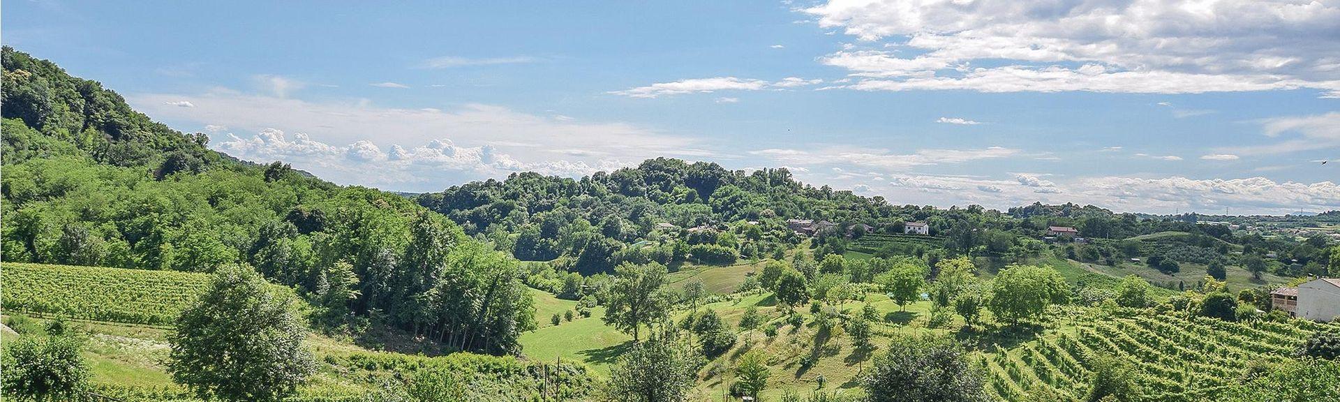 Montagnana, Padua, Veneto, Italy
