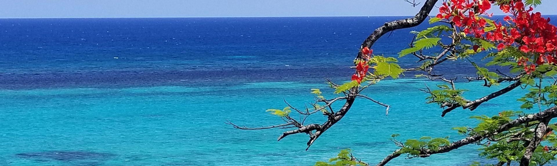 James Bond Beach, Oracabessa, Jamaica