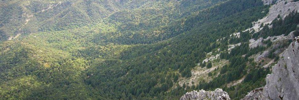 Parc naturel Sierra de Grazalema, Grazalema, Andalousie, Espagne