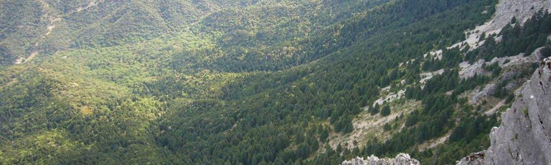 Sierra de Grazalema Natural Park, Grazalema, Andalusia, Spain