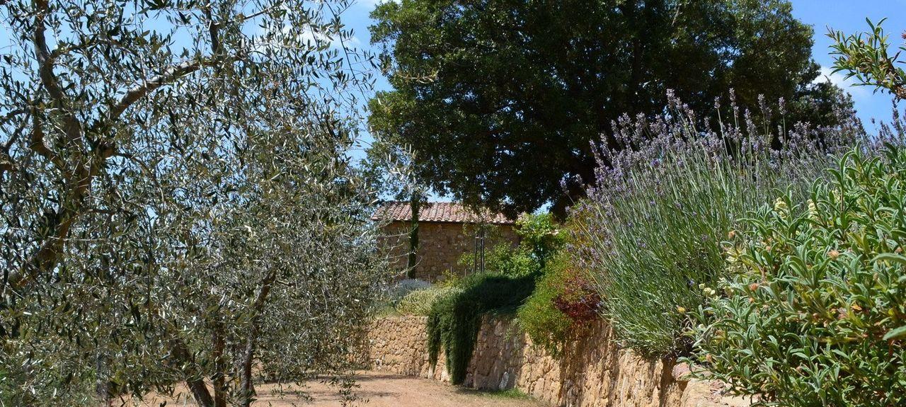 Sarteano, Siena, Tuscany, Italy