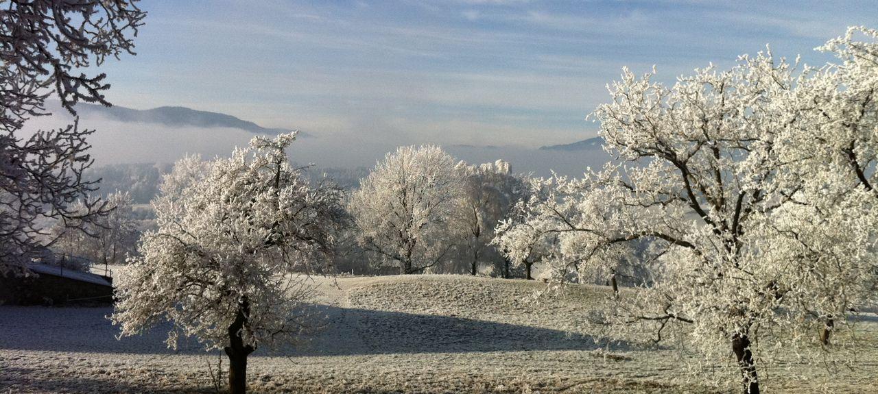 Gemeinde Sankt Urban, Kärnten, Österreich